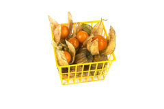 Physalis fruits in plastic basket on white Stock Image