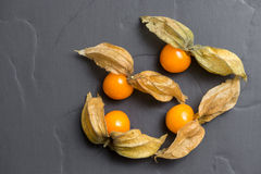 Physalis fruits Royalty Free Stock Image
