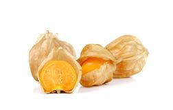 Physalis fruits on white background. Stock Photos