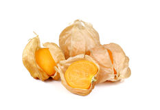 Physalis fruits on white background. Royalty Free Stock Photography