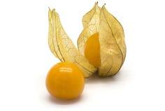 Physalis fruits Royalty Free Stock Photo