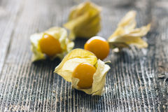 Physalis fruits Royalty Free Stock Images