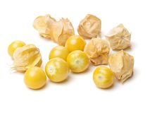 Physalis group Stock Images