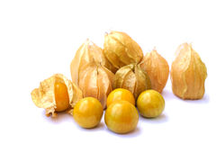 Physalis Group. On white background. Songkhla, Thailand Royalty Free Stock Photos