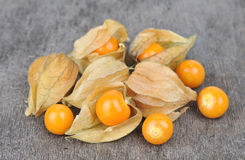 Physalis heap fruit Royalty Free Stock Photography
