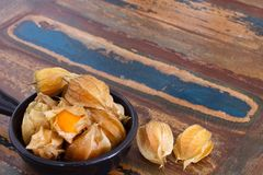 Physalis with husk in black bowl Royalty Free Stock Photos