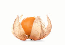 Physalis, isolated Royalty Free Stock Photography