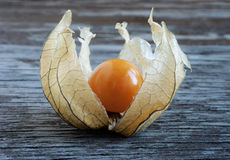 Physalis, lying on a wooden surface Royalty Free Stock Photography