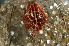 Physalis net. Remain of a physalis(latin name) that looks lantern Royalty Free Stock Photography
