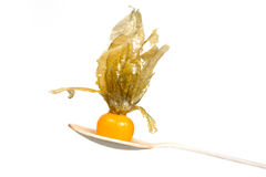 Physalis orgánico anaranjado en la cuchara de madera aislada sobre el fondo blanco Fotografía de archivo