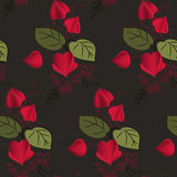 Physalis pattern. Including seamless sample in swatch panel (Illustrator Royalty Free Stock Image