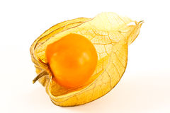 Physalis peruviana Royalty Free Stock Photography