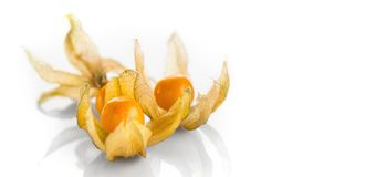 Physalis peruviana. Cape Gooseberries over white background. Ripe fresh Physalis closeup stock image