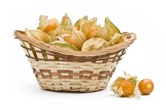 Physalis in a pottle Royalty Free Stock Images