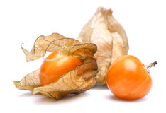 Physalis. Ripe physalis on a white background royalty free stock photos