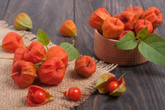Physalis scattered on a dark wooden table Stock Photos