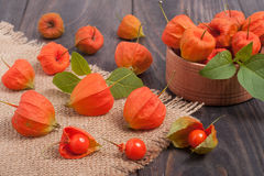 Physalis scattered on a dark wooden table Stock Photography