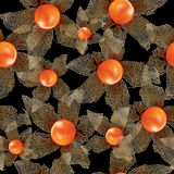 Physalis seamless vector background Royalty Free Stock Photos