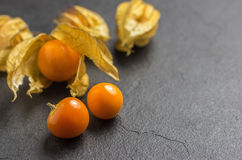 Physalis on slate plate royalty free stock images