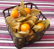 Physalis. Some fresh physalis berries in a box stock photo