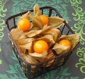 Physalis. Some fresh physalis berries in a box stock image