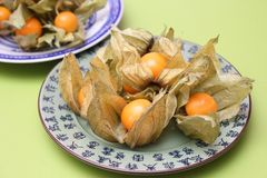 Physalis. Some fresh physalis berries on a plate royalty free stock image