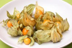 Physalis. Some fresh exotic berries called physalis royalty free stock images