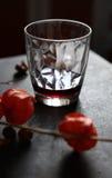 Physalis und ein Glas stockfotos