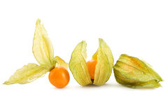Physalis on white Stock Photography