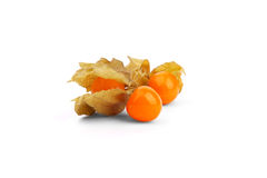 Physalis  on white background Royalty Free Stock Photo