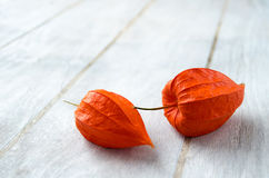 Physalis on a white wooden background. Physalis (cape gooseberry or groundcherrie) fruits closeup on a white wooden background Royalty Free Stock Image
