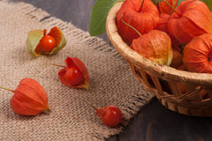 Physalis in a wicker basket on the table Stock Photos