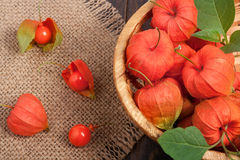 Physalis in a wicker basket on the table Stock Image