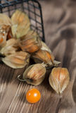 Physalis on the wooden background Stock Image