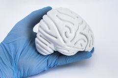 Physician keeps in hand, dressed in a blue latex glove, the human brain figure on white background close up. The idea for the visu. Alization of brain health or royalty free stock photo