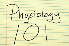 Physiology 101 On A Yellow Legal Pad Royalty Free Stock Image