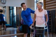 Physiothérapeute aidant la patiente supérieure de femme pour marcher avec le cadre de marche Photo stock