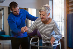 Physiotherapist assisting patient to walk with walking frame. In clinic Royalty Free Stock Photography
