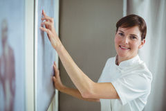 Physiotherapist pointing at skeleton sketch on white board Royalty Free Stock Photography