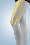 Physiotherapy treatment with therapeutic tape for leg pain. Stock Image