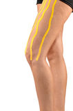 Physiotherapy treatment with therapeutic tape for leg pain. Royalty Free Stock Photography
