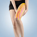 Physiotherapy treatment with therapeutic tape for leg pain. Royalty Free Stock Photo