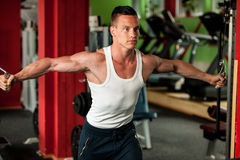 Physique fitness competitor works out in gym lifting dumbbells Stock Images