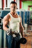 Physique fitness competitor works out in gym lifting dumbbells royalty free stock image