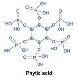 Phytic acid phosphorus Stock Images