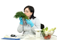 Phytocontrol technician smelling dill Stock Image