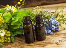 Phytothérapie avec des extraits d'usines et des bouteilles d'essence Photographie stock