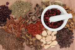 Phytothérapie chinoise image stock