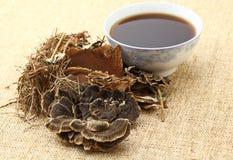 Phytothérapie chinoise avec l'ingrédient photos stock