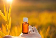Phytothérapie ou aromatherapy, bouteille image libre de droits